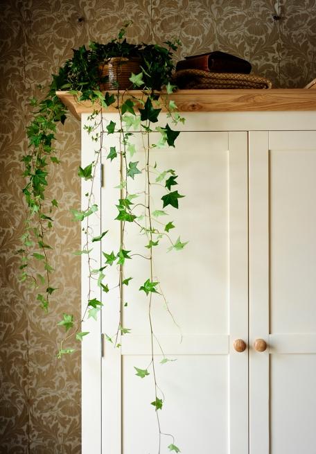 Mottisfont Tripple Wardrobe, Vintage Wallpaper, Blanket Box, Vintage Wallpaper, Trailing Ivy,Painted furniture,Bedroom Furniture
