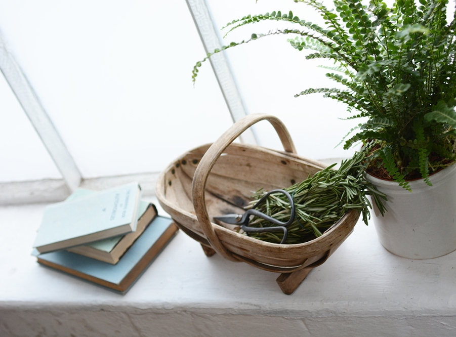 rosemary basket scissors cut herbs