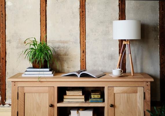Oak TV unit, space, wide, lamp, bogazine, Spider plant