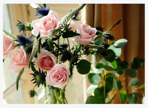 FOR THE ROSES…6 TIPS FOR NURTURING OUR FAVOURITEFLOWER
