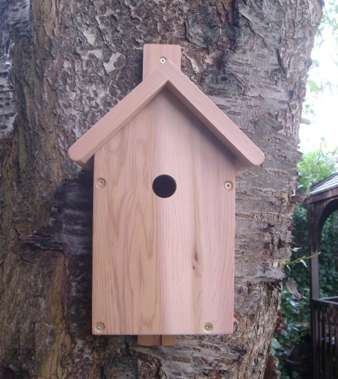 Birdhouse_with_Camera