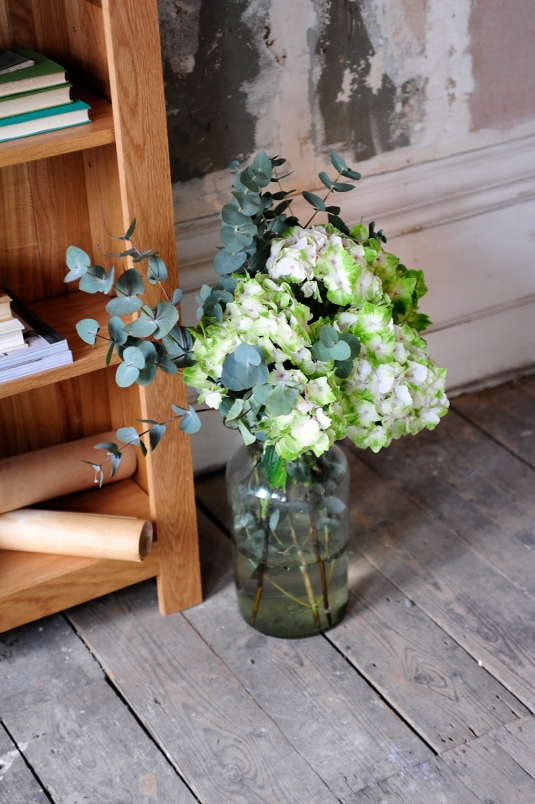 hydrangers, Flowers, styling, painted wall, oak bookcase, oak furniture