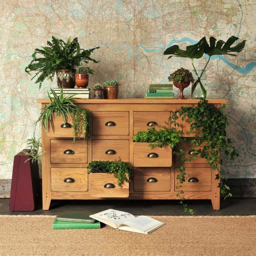 oak Chest of drawers, rustic oak, oakland, plants