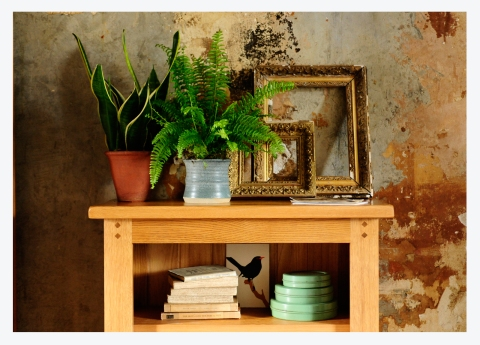 STYLING RUSTIC OAK…INSIDER TIPS FROM OUR CREATIVE TEAM