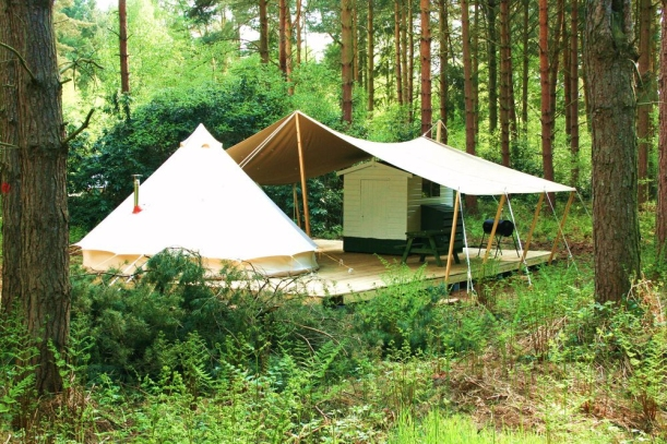 Tent, cool camping, forrest