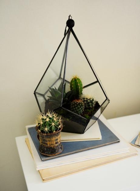 Terrariuim, white furniture, cacti, cactus, succulents, vintage books