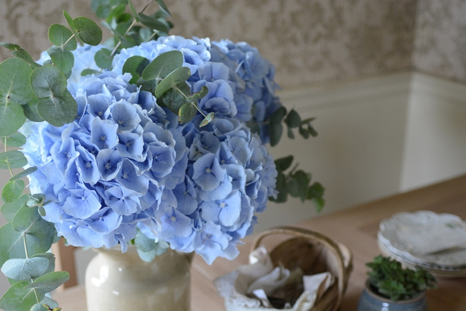 blue hydrangeas, eucalyptus, flowers, table, blooms2