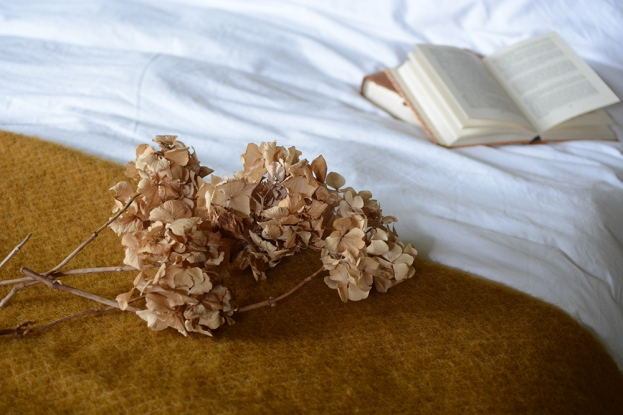 Dried Hydrangeas, dried flowers, vintage bedroom, bed, mustart throw