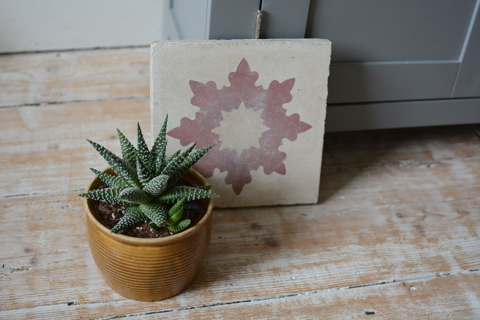Vintage Tile, cactus, white washed wooden floor